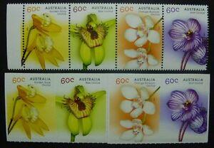 Australia-Australia-2014-ORCHIDEE-ORCHIDS-FIORI-FLOWERS-plants-pianta-MNH