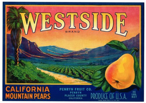 GENUINE CRATE LABEL WESTSIDE SUNSET PLACER COUNTY PENRYN VINTAGE 1930S PALM TREE