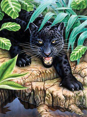 Malen nach Zahlen schwarzer Leopard Tiermotiv Komplettset Größe 22 cm x 29 cm