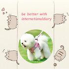 internationaldiary81