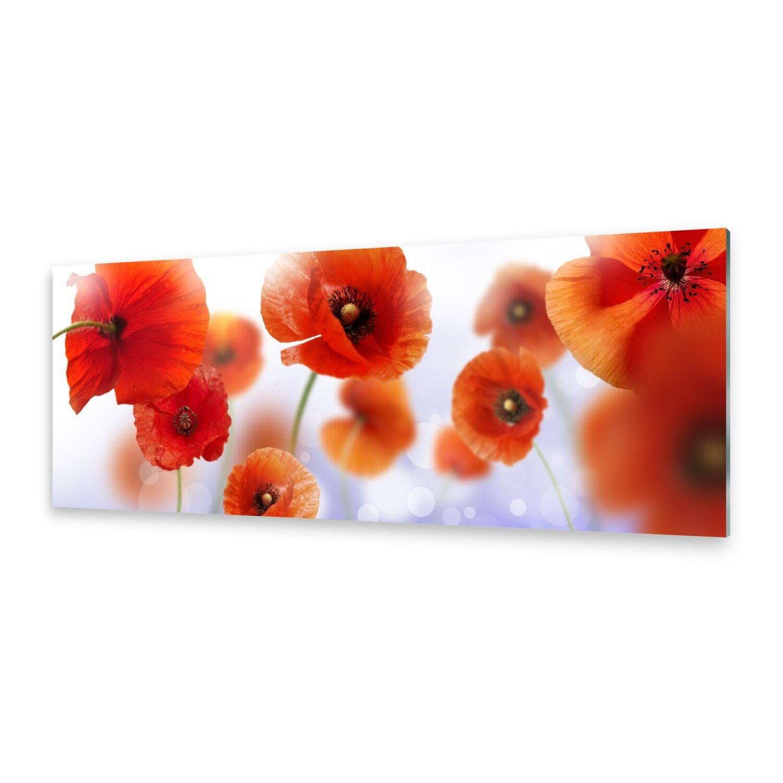 Acrylglasbilder Wandbild aus Plexiglas® Bild Mohn
