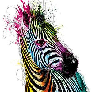 Colourful Zebra Painting