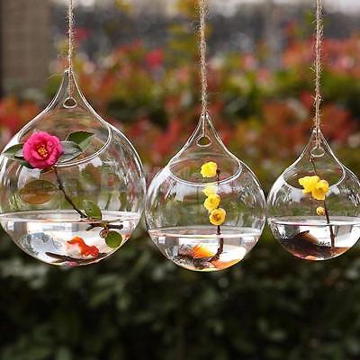 Clear Various Glass Hanging Vase Bottle Terrarium Container Plant Flower Decor