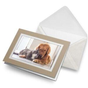 Greetings-Card-Biege-Best-Friends-Cat-Dog-Pet-Love-15878