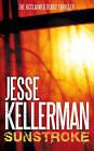 Sunstroke by Jesse Kellerman (Paperback, 2006)
