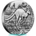 2016 Australia Kangaroo 2oz Silver High Relief Antiqued Coin Perth Mint COA Box