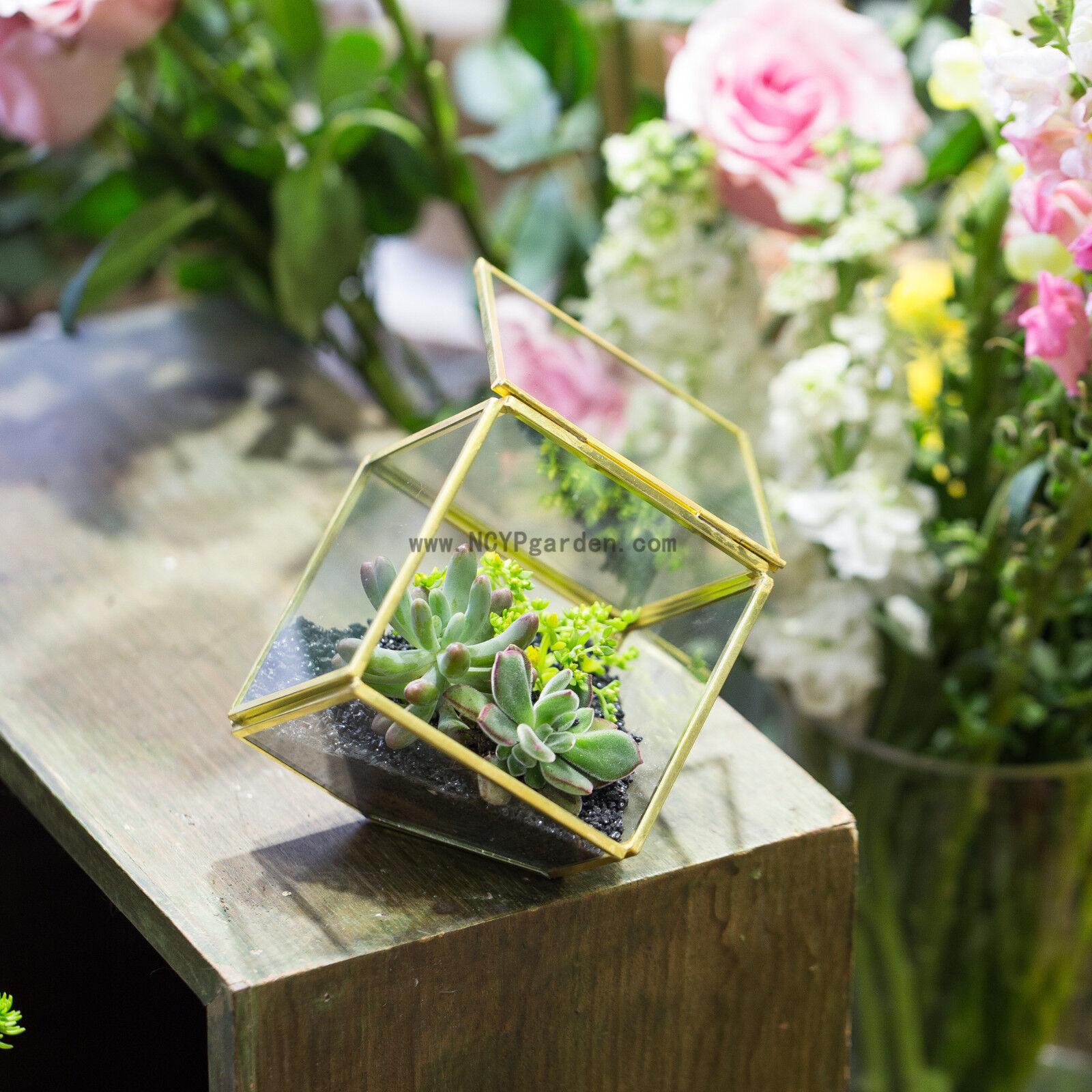 Inclined Desktop Creative Cube Geometric Terrarium Indoor