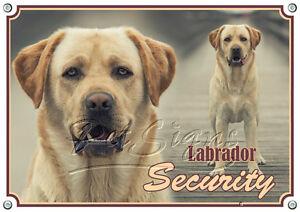 Bouclier De Chien Avec Labrador Retriever Blond - Sécurité