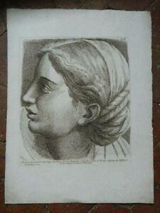 Stampa Ritratto Incisione Acquaforte Paolo Fidanza Dopo Raphael Vaticano XVIII