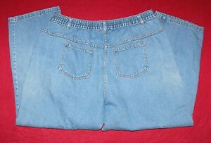 WOMAN-WITHIN-Elastic-Waist-Classic-Fit-Petite-Plus-Blue-Jeans-size-20WP-36x26-034