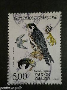 Francia-1984-Tp-2340-Animali-Uccelli-Falco-Pellegrino-Timbrato-Bird-Stamp