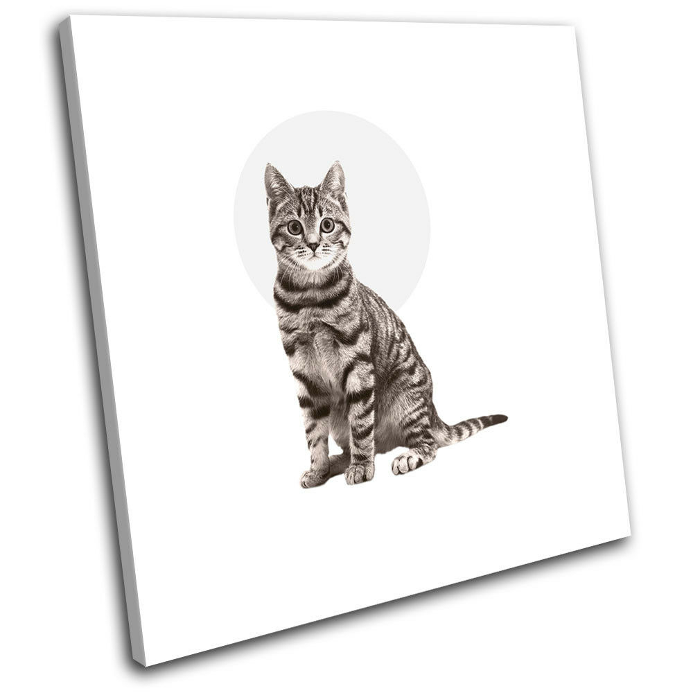 Cat Tabby Modern Abstract Animals SINGLE TOILE murale ART Photo Print