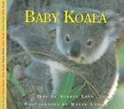 Baby Koala by Aubrey Lang (Hardback, 2003)