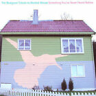 Something You've Never Heard Before: The Bluegrass Tribute to Modest Mouse by Iron Horse (Bluegrass) (CD, Jan-2007, CMH Records)