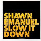 (FS250) Shawn Emanuel, Slow It Down - 2006 DJ CD