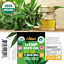 Organic-Hemp-Oil-Extract-for-Pain-Relief-Stress-Sleep-PURE-amp-NATURAL-1000mg thumbnail 2