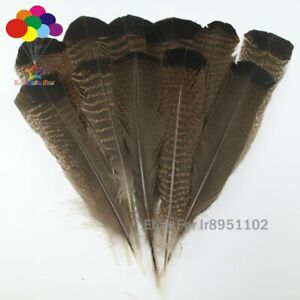 Broken-NATUREL-10-pcs-precieux-Wild-Turkey-Queue-Plumes-10-14-in-25-35-cm