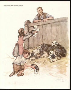 Details about GIRL BOY OLD ENGLISH SHEEPDOG AND PUPS CHARMING VERNON STOKES  1940'S DOG PRINT