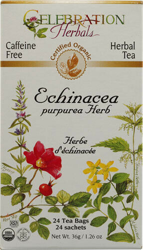 Echinacea Purpurea Tea by Celebration Herbals, 24 tea bag Organic