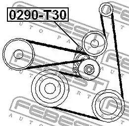 v-ribbed belt FEBEST 0290-T30 Belt Tensioner