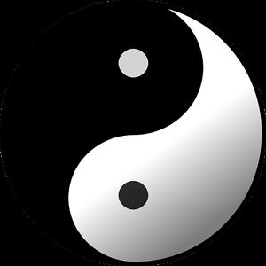 Heilkräuter der Traditionellen Chinesischen Medizin TCM Samen zum Aussuchen