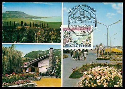 Genial Ungarn Mk 1972 Flora FrÜchte Traube Fruits Grape Wine Maximum Card Mc Cm Cz16 Briefmarken