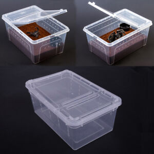 Clear-pet-Reptile-Breeding-Cage-Box-Habitat-lizard-insect-Amphibian-Frog-Spider