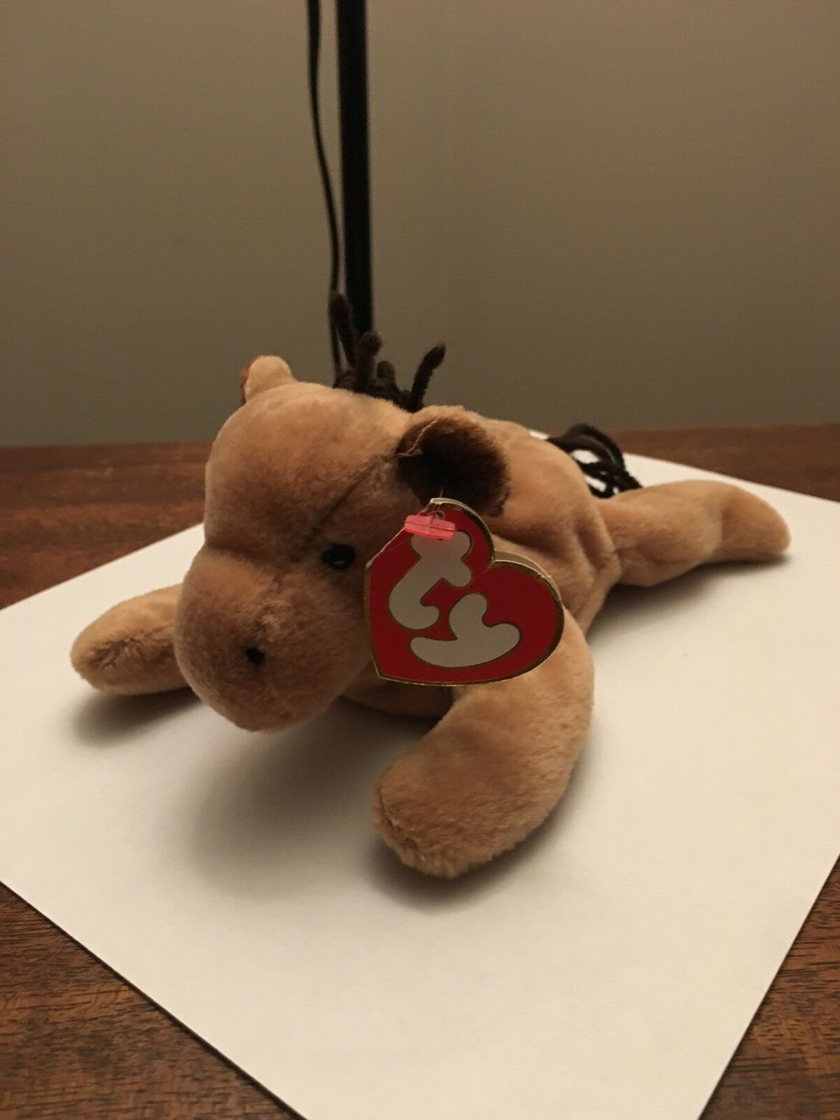 Derby Beanie Baby 3rd Gen Mint Condition   A Very Special Pony And A Must Have