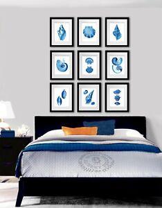 Blue Seashells Set Of 9 Unframed Art Prints Coastal Bedroom Wall Decor Ebay