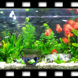 Resin-Vase-With-Moss-Aquarium-Decoration-Accessories-for-Fish-Shrimp-Tank-L