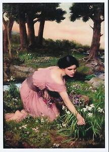 Waterhouse Pre-Raphaelite Print Picking Spring Flowers Woman Gathering Narcissus