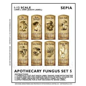 Puppenhaus-Miniatur-Apotheker-8-Pilz-Pilz-Etiketten-Set-5