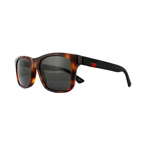 53a55ace24a Image is loading Gucci-Sunglasses-GG0008S-006-Havana-Black-Rubber-Grey-