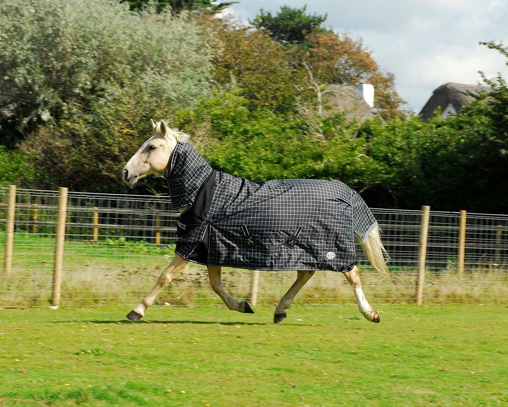 RhineGold Montpelier Full Neck 100g Horse Turnout Rug 600d combo