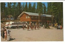 Vintage Postcard Banff Canada Johnson Canyon Trading Post Bungalow Camp