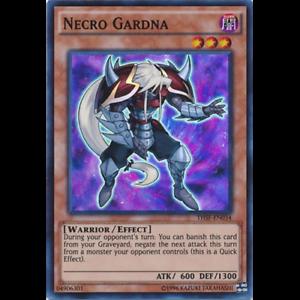 THSF-EN034 Super Rare Unlimited Edition Necro Gardna