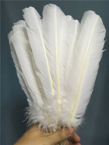 Wholesale-beautiful-white-la-Turquie-en-plumes-10-12-in-25-30-cm-10-100pcs