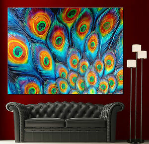 Wall Art Canvas Painting Print Fine Peacock Feathers Colorful Home Decor Prints Ebay