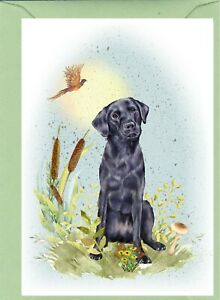Labrador-Retriever-Dog-4-034-x-6-034-Blank-Card-ideal-Mothers-Day-Valentines-etc