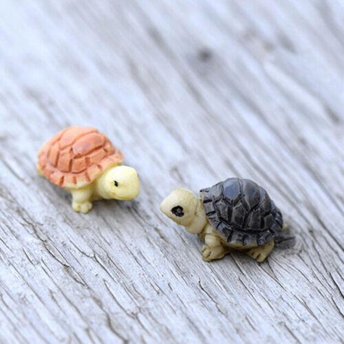 2pcs Miniature Dollhouse Bonsai Fairy Garden Landscape DIY Tortoise Decor Al