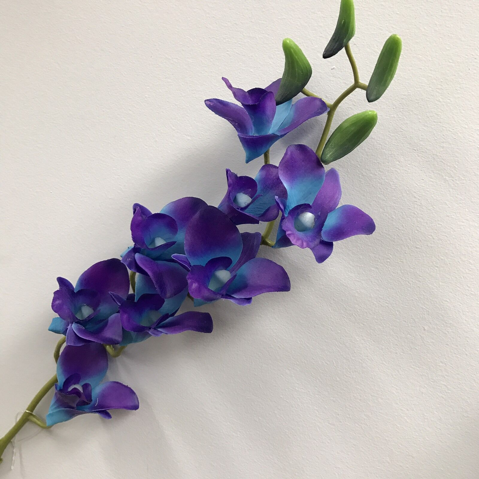 12 latex real touch singapore blue purple orchid dendrobium orchids 12 latex real touch singapore blue purple orchid dendrobium orchids silk flowers ebay izmirmasajfo