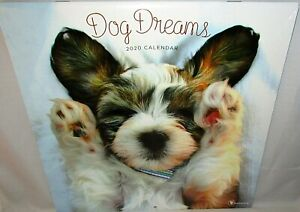 2020-Wall-Calendar-DOG-DREAMS-12-034-x-24-When-Opened