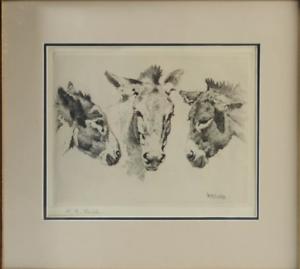 William-Robinson-Leigh-Etching-DONKEYS-United-States-1866-1955-15-034-H-17-039-W