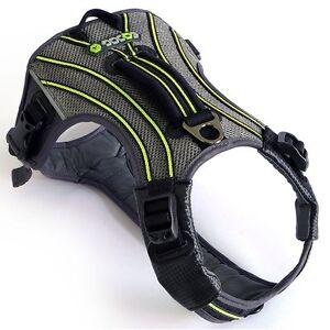 Eqdog Pro Harness Harnais pour chien noir / vert