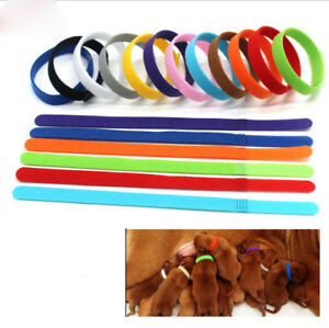 JD-12-colors-Identification-ID-Collars-Bands-Whelping-Puppy-Kitten-Dog-Pets-Cat