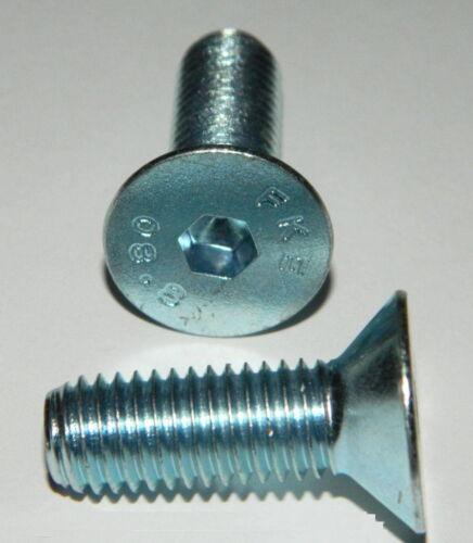 Senkkopfschrauben M10x30 Stahl verzinkt Güte 8.8 DIN7991 30 Stk