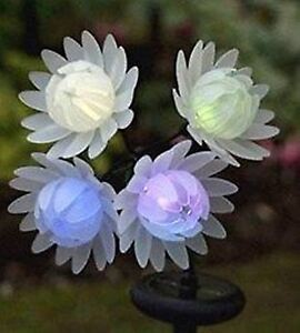Image Is Loading Colour Changing Solar Flowers Lights Garden Light