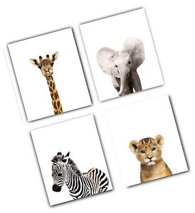 Details About Safari Baby Animals Nursery Decor Art Set Of 4 Unframed Wall Free Shipping