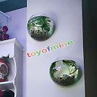 Mini Vase Verre à Suspendre Forme de Boule Décoration Fleur Plante DIY