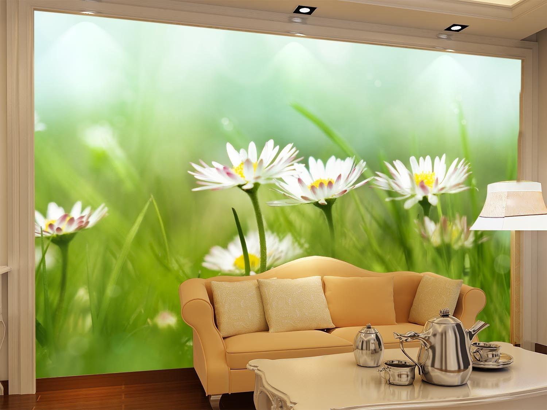 3D Crisantemo 5 Parete Murale Foto Carta da parati immagine sfondo muro stampa